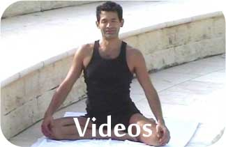 holistic health videos
